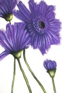 Purple Gerberas 2 by Cherie Roe Dirksen