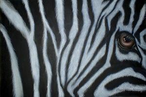 Zebra Eye by Cherie Roe Dirksen