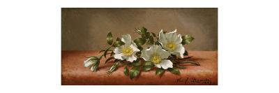 Cherokee Roses-Martin Johnson Heade-Premium Giclee Print