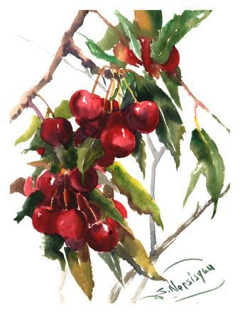 Cherries-Suren Nersisyan-Art Print