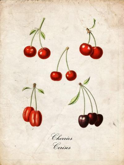 Cherries--Art Print