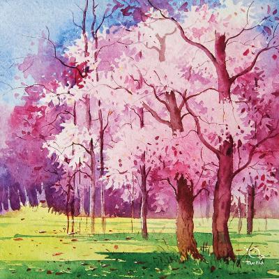 Cherry Blooms II- Blue Fish-Art Print