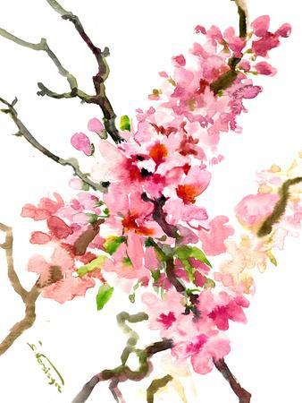 https://imgc.artprintimages.com/img/print/cherry-blossom-sakura-3_u-l-f94jw70.jpg?p=0