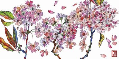 https://imgc.artprintimages.com/img/print/cherry-blossom_u-l-f93bhd0.jpg?p=0