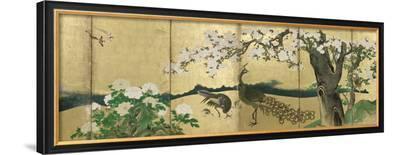 Cherry Blossoms and Peacocks-Kano Sansetsu-Framed Art Print