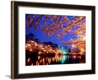 Cherry Blossoms and Takada Castle--Framed Photographic Print