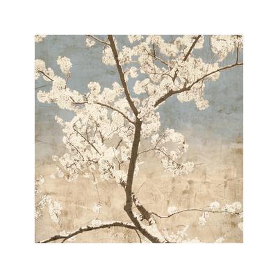 Cherry Blossoms I-John Seba-Giclee Print