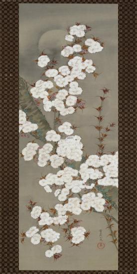 Cherry Blossoms-Yoshida Shuran-Art Print