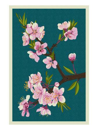 https://imgc.artprintimages.com/img/print/cherry-blossoms_u-l-q1gpe170.jpg?p=0