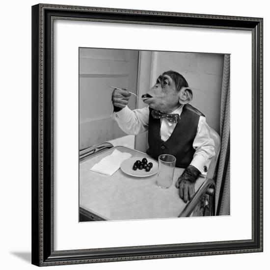 Cherry Chimp-Vecchio-Framed Photographic Print