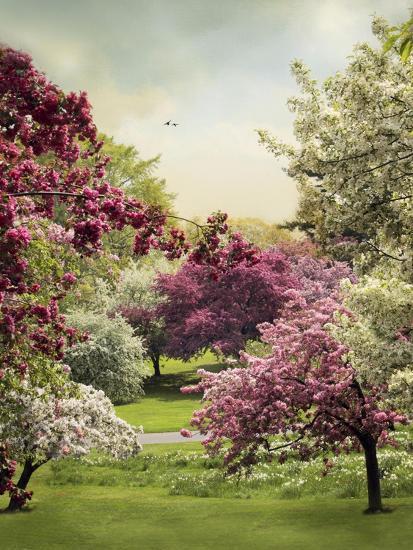 Cherry Tree Grove-Jessica Jenney-Giclee Print