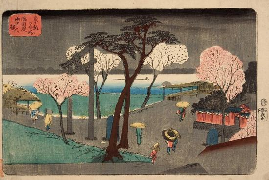Cherry Trees in Rain on the Sumida River Embankment. (Sumida Zutsumi Uchû No Sakur)-Utagawa Hiroshige-Giclee Print