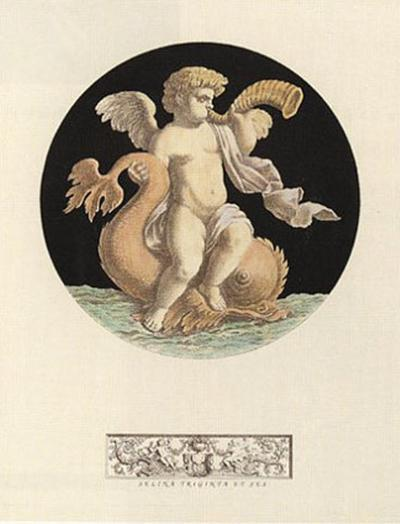 Cherub on Dolphin with Trumpet I--Art Print