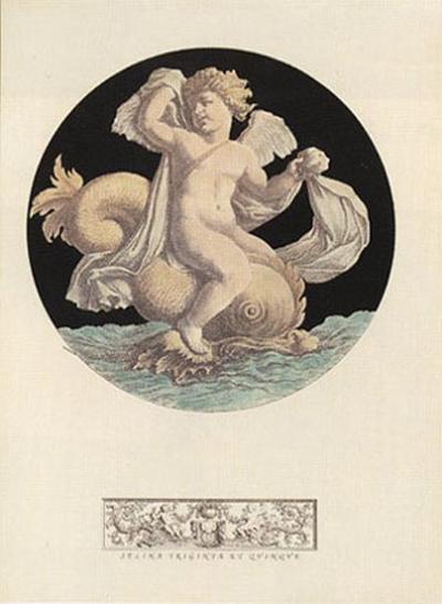Cherub Playing with Dolphin I--Art Print