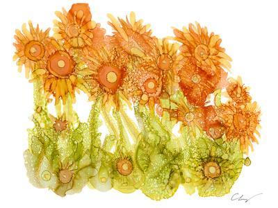 Sunlit Poppies I