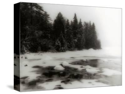 Frozen Lake and Evergreen Trees