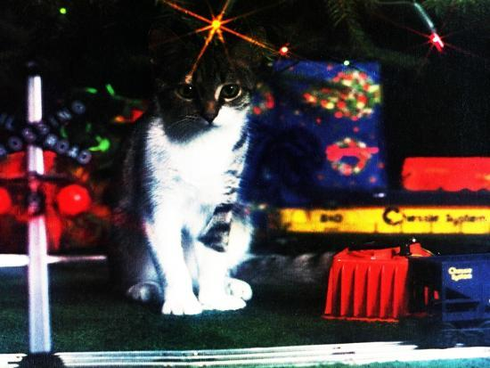 Chessie under the Christmas Tree--Giclee Print