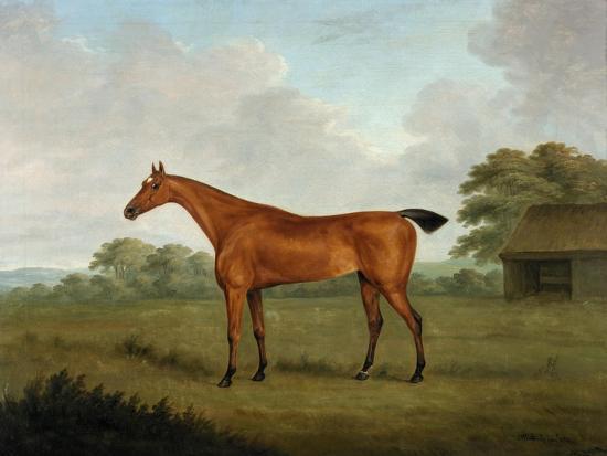 Chestnut Horse in a Landscape, 1815-John Nott Sartorius-Giclee Print