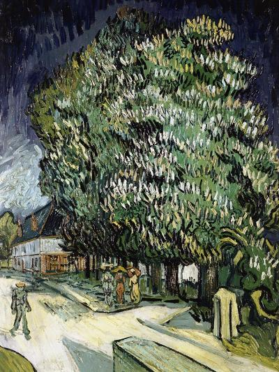 Chestnut Trees in Blossom, Auvers-Sur-Oise, 1890-Vincent van Gogh-Giclee Print
