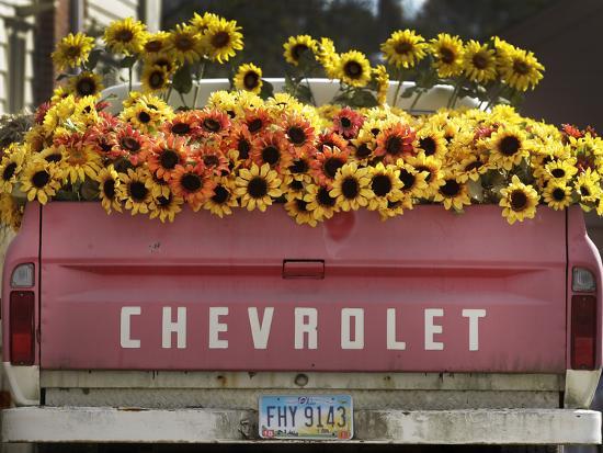Chevrolet-Amy Sancetta-Photographic Print