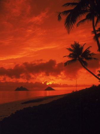 Sunrise, Lanikai Oahu, Hawaii