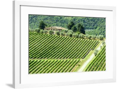 Chianti, Tuscany-Claudiogiovanni-Framed Photographic Print
