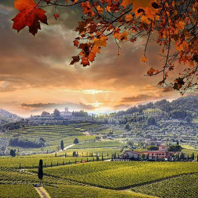 Chianti Vineyard Landscape in Tuscany, Italy-extravagantni-Photographic Print