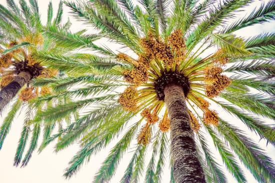 Chic Palms I-Acosta-Art Print