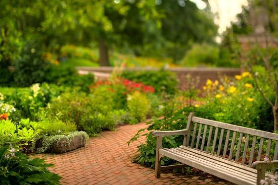 Chicago Botanic Garden Bench-Steve Gadomski-Photographic Print