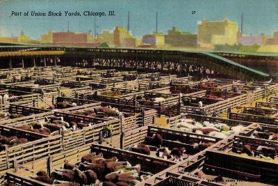 Chicago Illinois Usa, Part of Union Stock Yards, Houses, Rinder--Giclee Print