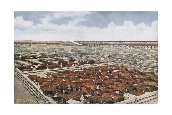 Chicago Stock Yards--Giclee Print