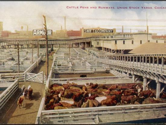Chicago Stockyards--Photographic Print
