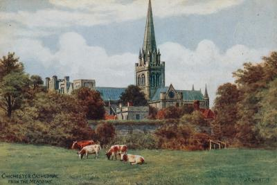 Chichester, Cathedral, from the Meadows-Alfred Robert Quinton-Giclee Print