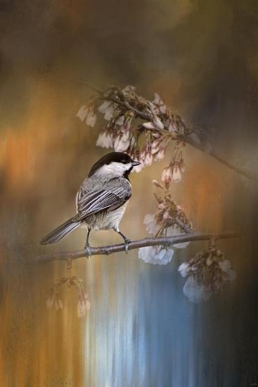 Chickadee in the Garden-Jai Johnson-Giclee Print