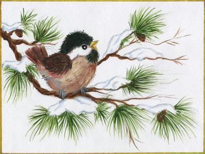 https://imgc.artprintimages.com/img/print/chickadee-on-a-pine-tree_u-l-pyksh50.jpg?p=0