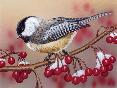 Chickadee with Berries-William Vanderdasson-Giclee Print