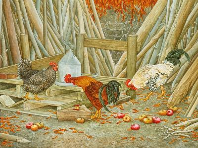 Chicken Feed-Ditz-Giclee Print