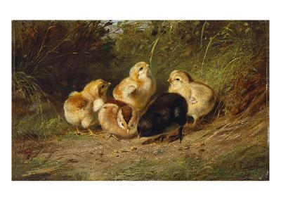 Chickens, 1878-Arthur Fitzwilliam Tait-Giclee Print