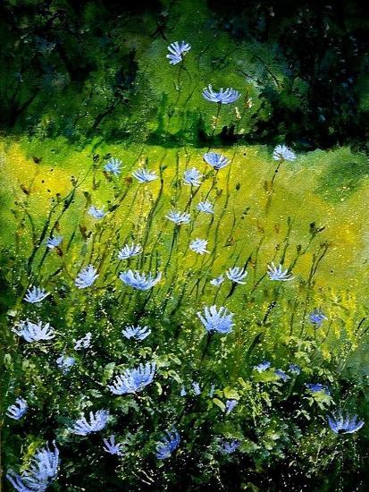 Chicorees flowers-Pol Ledent-Art Print