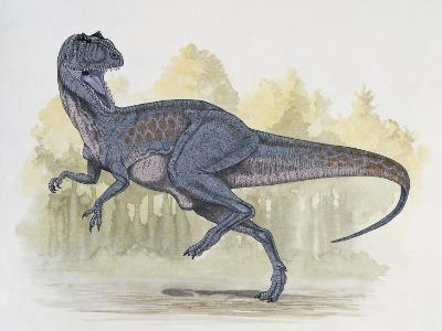 Chilantaisaurus Dinosaur Walking in Water--Photographic Print
