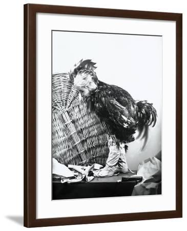 Child Dressed as a Cockerel-Marion Wulz-Framed Photographic Print