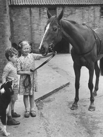 Child's Horse-Raymond Kleboe-Photographic Print