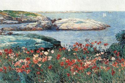 Poppies, Isle of Shoals