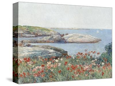 Poppies, Isles of Shoals, America, 1891