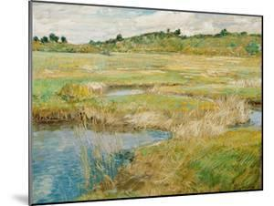The Concord Meadow, C. 1890 by Childe Hassam