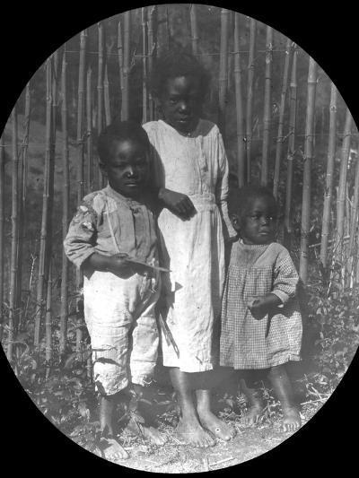 Children Near Petrópolis, Brazil, Late 19th or Early 20th Century--Photographic Print