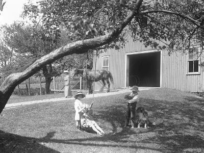 Children of the Mccready Family with a Dog and Puppy Gathered around a Rope Swing Outside a Barn-William Davis Hassler-Photographic Print