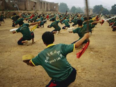 https://imgc.artprintimages.com/img/print/children-practice-kung-fu-in-a-field-at-the-ta-gou-academy_u-l-p3kure0.jpg?p=0