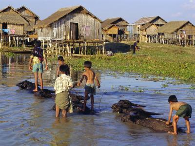 Children Riding Water Buffaloes, Inle Lake, Myanmar, Asia-Upperhall Ltd-Photographic Print
