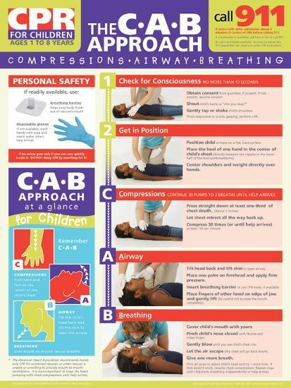 Children's CPR Poster--Laminated Poster
